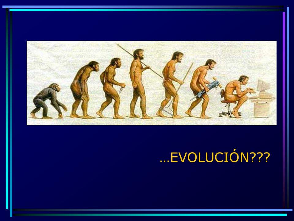 …EVOLUCIÓN???