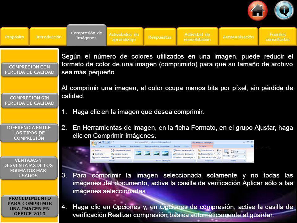 Propósito Introducción Actividad de consolidación Actividad de consolidación Fuentes consultadas Fuentes consultadas Actividades de aprendizaje Actividades de aprendizaje Respuestas Autoevaluación Compresión de Imágenes Compresión de Imágenes Los formatos de archivo más utilizados en la web son JPEG, GIF y PNG.