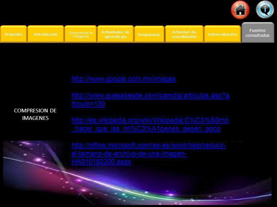 Propósito Introducción Actividad de consolidación Actividad de consolidación Fuentes consultadas Fuentes consultadas Compresión de Imágenes Compresión de Imágenes Actividades de aprendizaje Actividades de aprendizaje Respuestas Autoevaluación Verifica que al realizar tus comprensiones cubra los siguientes puntos de la siguiente lista de cotejo.