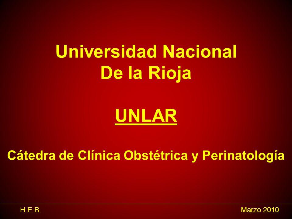 H.E.B.Marzo 2010 Universidad Nacional De la Rioja UNLAR Cátedra de Clínica Obstétrica y Perinatología
