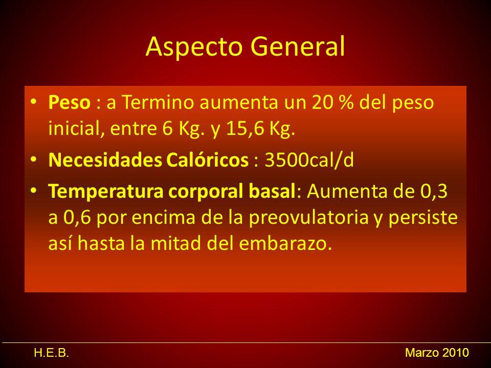 H.E.B.Marzo 2010 Aspecto General Peso : a Termino aumenta un 20 % del peso inicial, entre 6 Kg. y 15,6 Kg. Necesidades Calóricos : 3500cal/d Temperatu