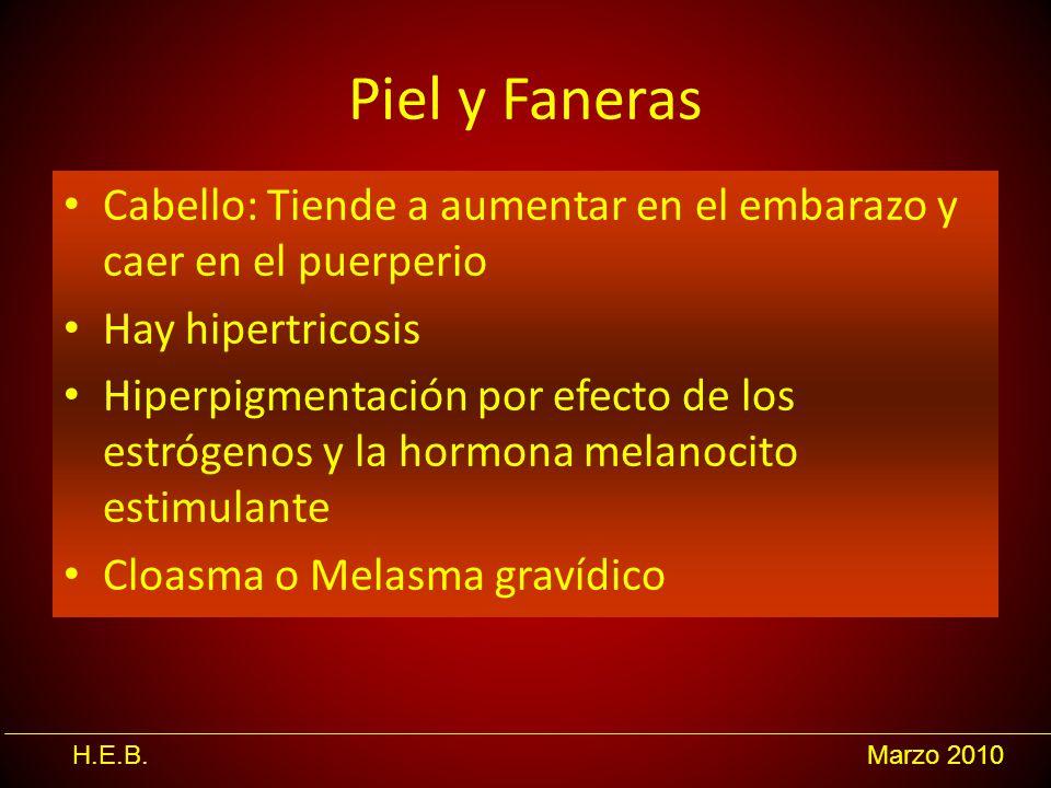 H.E.B.Marzo 2010 Piel y Faneras Cabello: Tiende a aumentar en el embarazo y caer en el puerperio Hay hipertricosis Hiperpigmentación por efecto de los