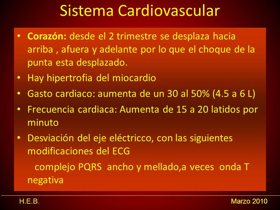 H.E.B.Marzo 2010 Sistema Cardiovascular Corazón: desde el 2 trimestre se desplaza hacia arriba, afuera y adelante por lo que el choque de la punta est