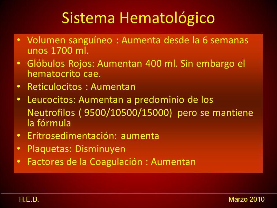 H.E.B.Marzo 2010 Sistema Hematológico Volumen sanguíneo : Aumenta desde la 6 semanas unos 1700 ml. Glóbulos Rojos: Aumentan 400 ml. Sin embargo el hem