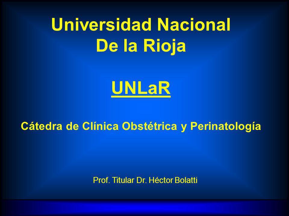H.E.B. CATEDRA DE CLINICA OBSTETRICA Y PERINATOLOGIA UNLaR Prof. Titular Dr. Héctor Bolatti Universidad Nacional De la Rioja UNLaR Cátedra de Clínica