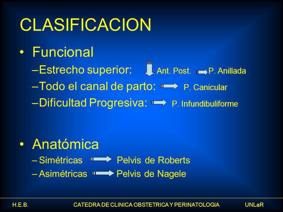 H.E.B. CATEDRA DE CLINICA OBSTETRICA Y PERINATOLOGIA UNLaR Funcional –Estrecho superior: D. Ant. Post. P. Anillada –Todo el canal de parto: P. Canicul