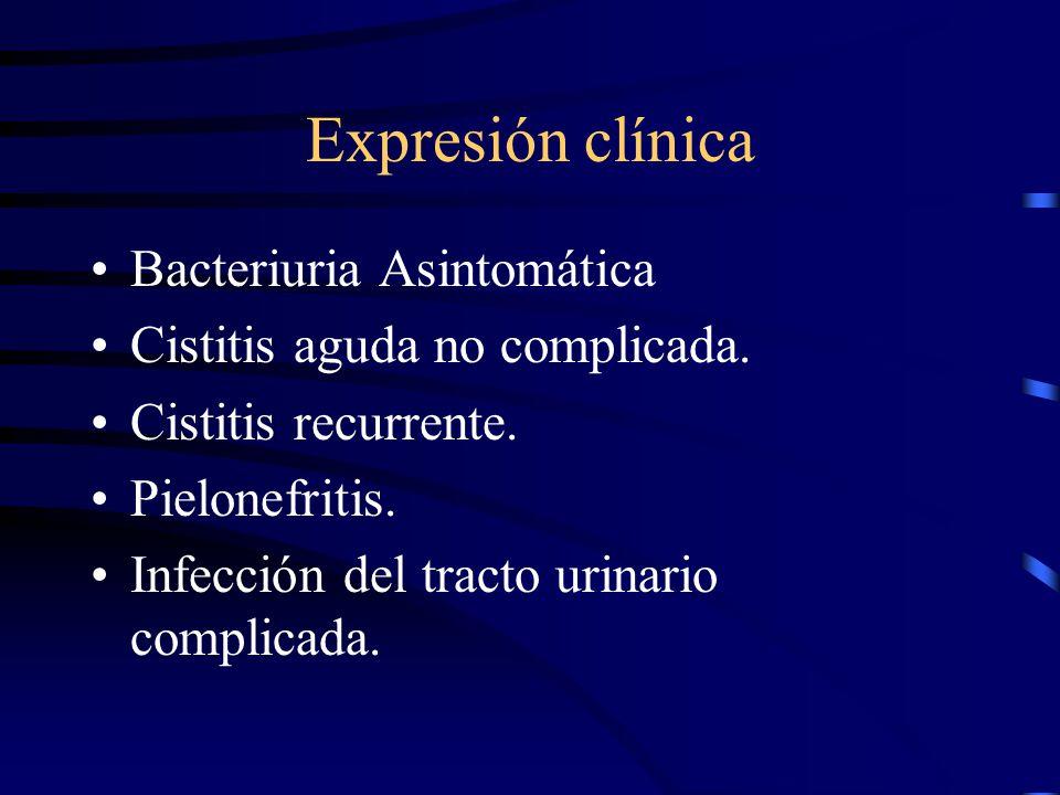 Expresión clínica Bacteriuria Asintomática Cistitis aguda no complicada. Cistitis recurrente. Pielonefritis. Infección del tracto urinario complicada.