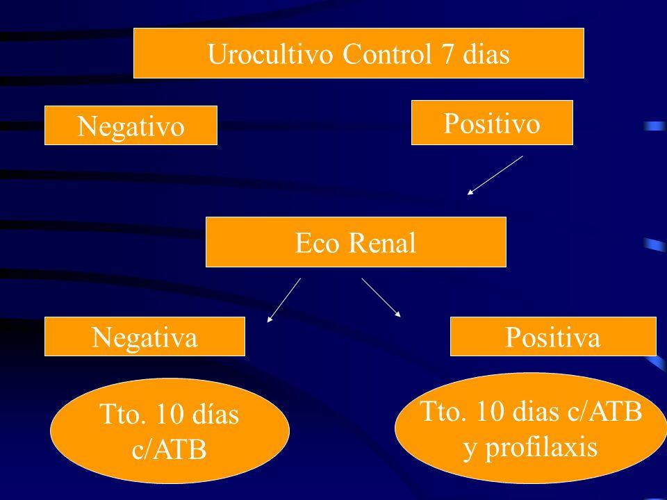 Urocultivo Control 7 dias Negativo Positivo Eco Renal NegativaPositiva Tto. 10 días c/ATB Tto. 10 dias c/ATB y profilaxis