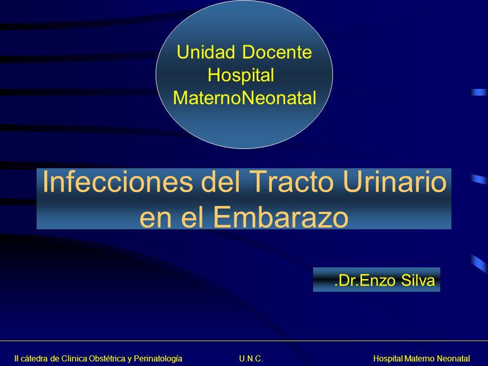 II cátedra de Clinica Obstétrica y Perinatología U.N.C. Hospital Materno Neonatal Unidad Docente Hospital MaternoNeonatal.Dr.Enzo Silva Infecciones de