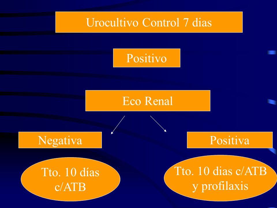 Urocultivo Control 7 dias Positivo Eco Renal NegativaPositiva Tto. 10 días c/ATB Tto. 10 dias c/ATB y profilaxis