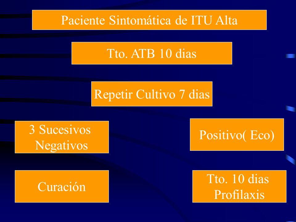 Paciente Sintomática de ITU Alta Tto. ATB 10 dias Repetir Cultivo 7 dias 3 Sucesivos Negativos Positivo( Eco) Curación Tto. 10 dias Profilaxis