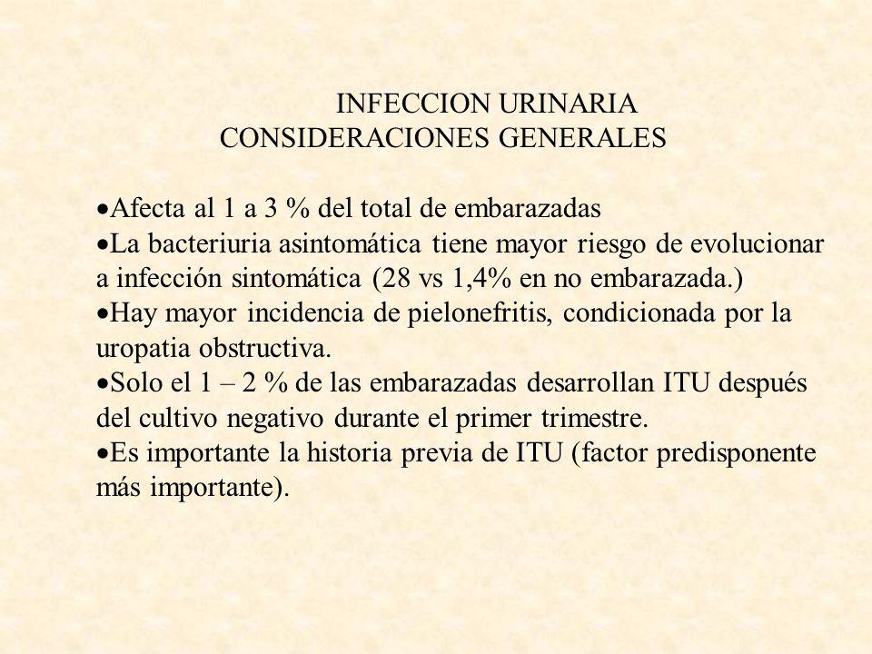 INFECCION URINARIA CONSIDERACIONES GENERALES Afecta al 1 a 3 % del total de embarazadas La bacteriuria asintomática tiene mayor riesgo de evolucionar