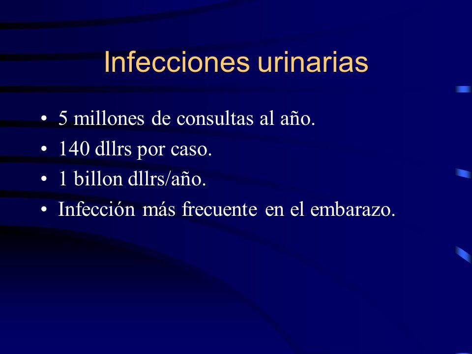 Infecciones urinarias 5 millones de consultas al año. 140 dllrs por caso. 1 billon dllrs/año. Infección más frecuente en el embarazo.