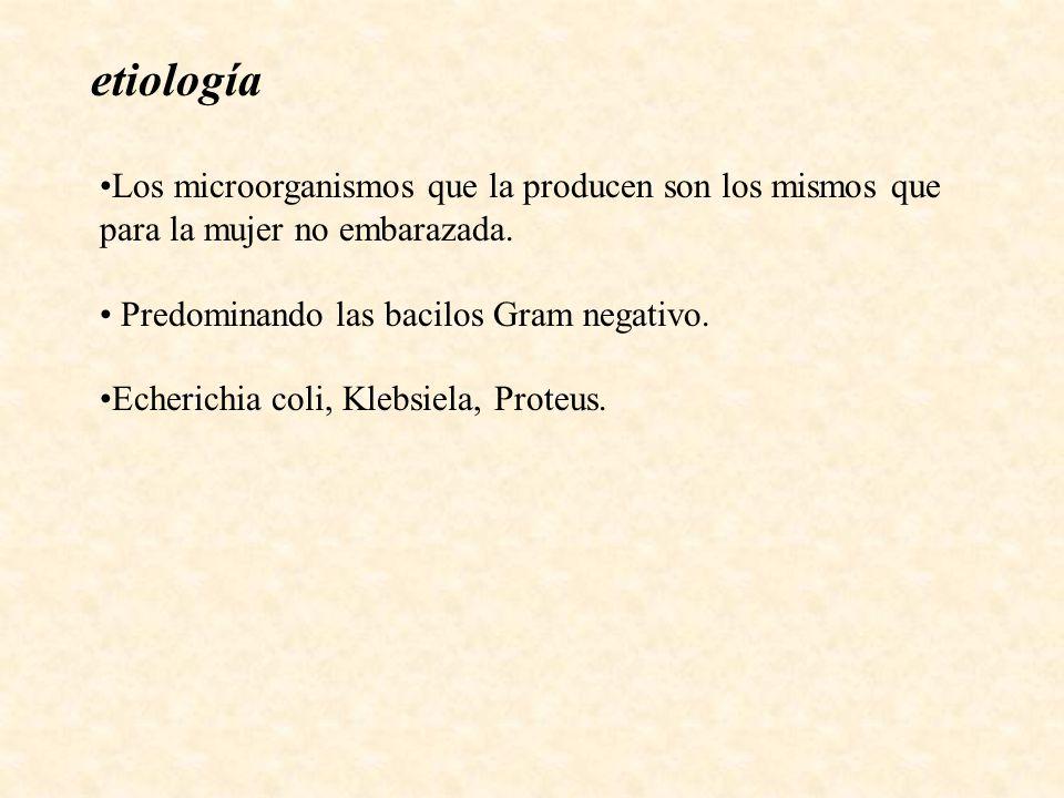 Los microorganismos que la producen son los mismos que para la mujer no embarazada. Predominando las bacilos Gram negativo. Echerichia coli, Klebsiela
