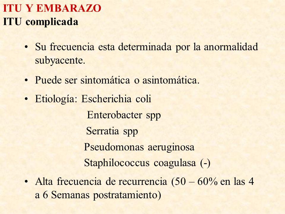 ITU Y EMBARAZO ITU complicada Su frecuencia esta determinada por la anormalidad subyacente. Puede ser sintomática o asintomática. Etiología: Escherich