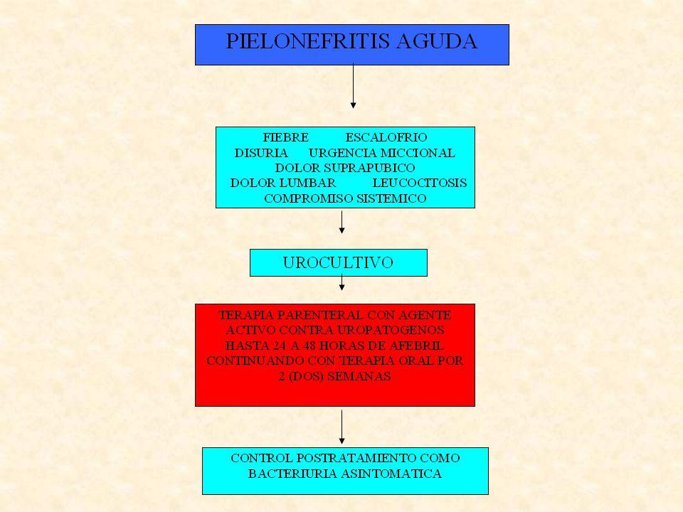 Itu y embarazo manejo Bacteruiria asintomatica: según antibiograma, tomando como primera elección amoxicilina, seguida por cefalexina o nitrofurantoina.