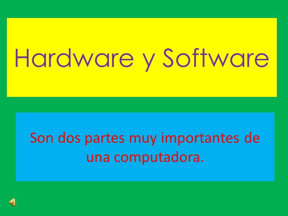 Hardware y Software Son dos partes muy importantes de una computadora.