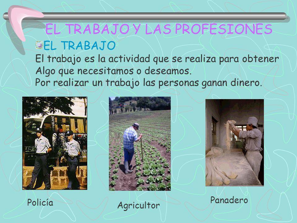 EL TRABAJO Y LAS PROFESIONES EL TRABAJO: Algunas personas trabajan obteniendo o fabricando productos.