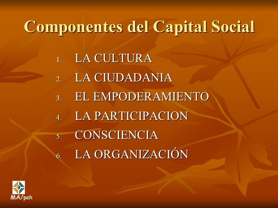 Componentes del Capital Social 1. LA CULTURA 2. LA CIUDADANIA 3. EL EMPODERAMIENTO 4. LA PARTICIPACION 5. CONSCIENCIA 6. LA ORGANIZACIÓN MA/ peh