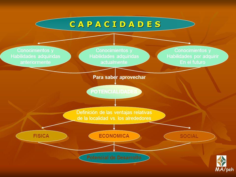 C A P A C I D A D E S Conocimientos y Habilidades adquiridas anteriormente Conocimientos y Habilidades adquiridas anteriormente Conocimientos y Habili