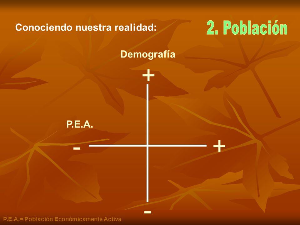+ +- - Demografía P.E.A. P.E.A.= Población Económicamente Activa Conociendo nuestra realidad: