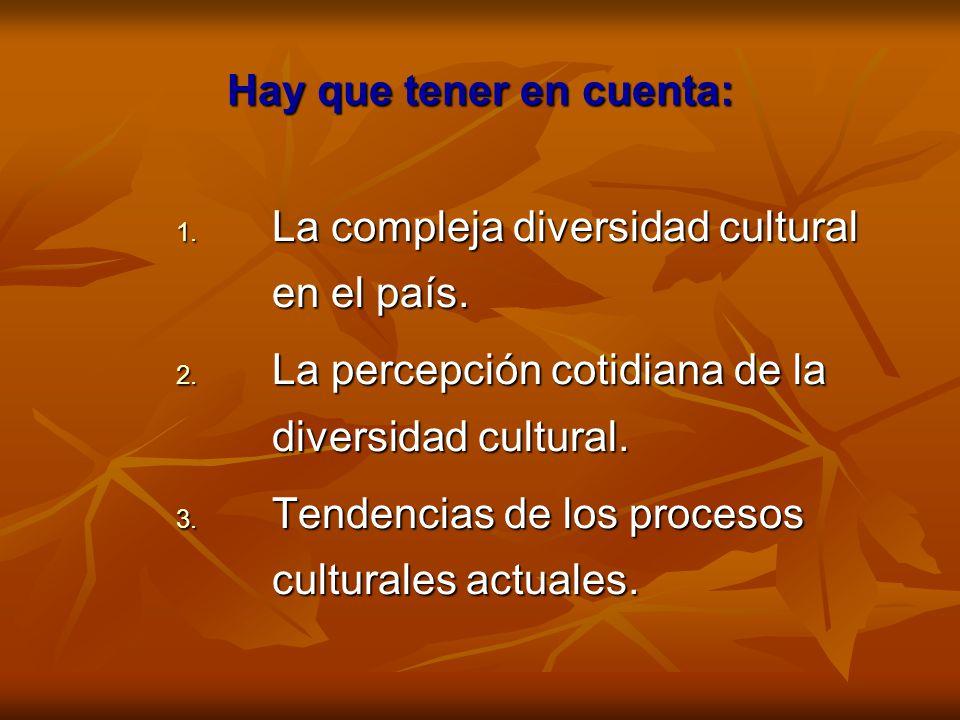 Hay que tener en cuenta: 1. La compleja diversidad cultural en el país. 2. La percepción cotidiana de la diversidad cultural. 3. Tendencias de los pro