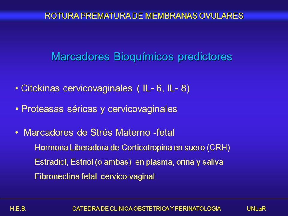 H.E.B. CATEDRA DE CLINICA OBSTETRICA Y PERINATOLOGIA UNLaR Marcadores Bioquímicos predictores Citokinas cervicovaginales ( IL- 6, IL- 8) Proteasas sér