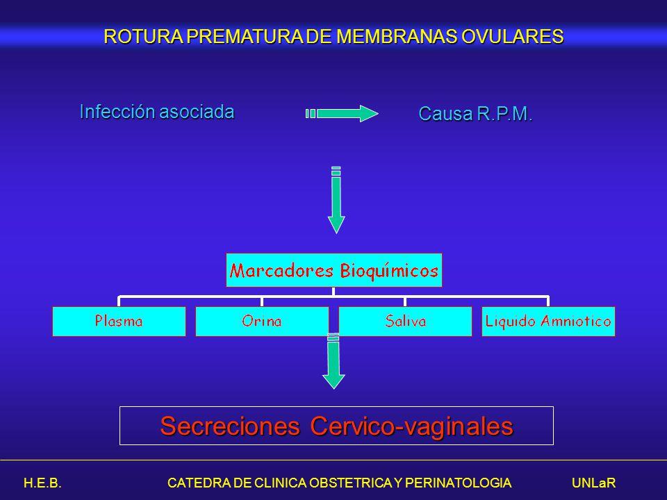 H.E.B. CATEDRA DE CLINICA OBSTETRICA Y PERINATOLOGIA UNLaR Secreciones Cervico-vaginales ROTURA PREMATURA DE MEMBRANAS OVULARES Infección asociada Cau