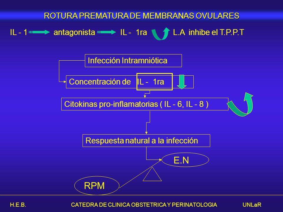 H.E.B. CATEDRA DE CLINICA OBSTETRICA Y PERINATOLOGIA UNLaR IL - 1 antagonista IL - 1ra L.A inhibe el T.P.P.T Concentración de IL - 1ra Respuesta natur