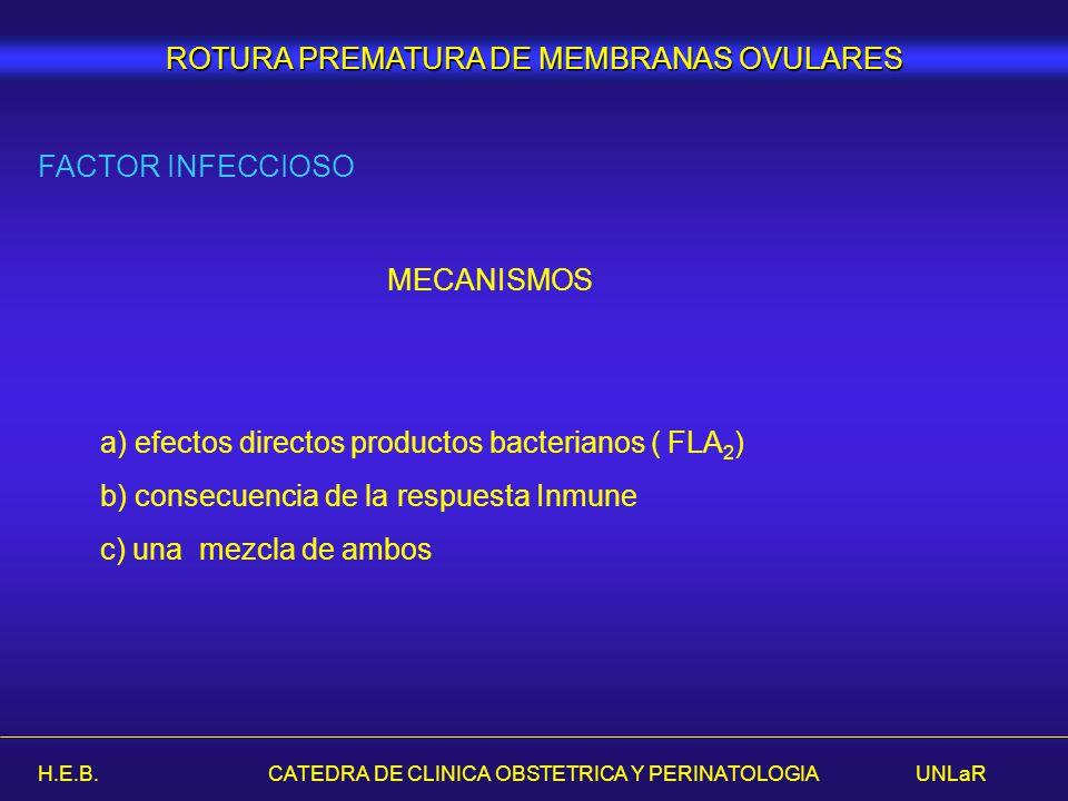 H.E.B. CATEDRA DE CLINICA OBSTETRICA Y PERINATOLOGIA UNLaR FACTOR INFECCIOSO MECANISMOS a) efectos directos productos bacterianos ( FLA 2 ) b) consecu