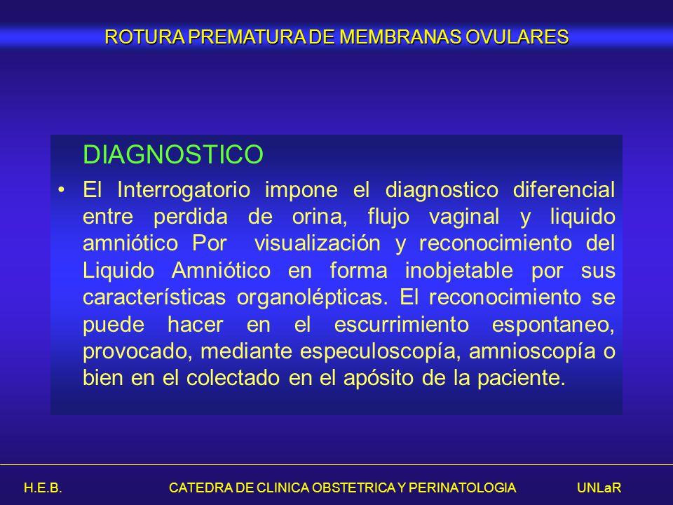 H.E.B. CATEDRA DE CLINICA OBSTETRICA Y PERINATOLOGIA UNLaR DIAGNOSTICO El Interrogatorio impone el diagnostico diferencial entre perdida de orina, flu