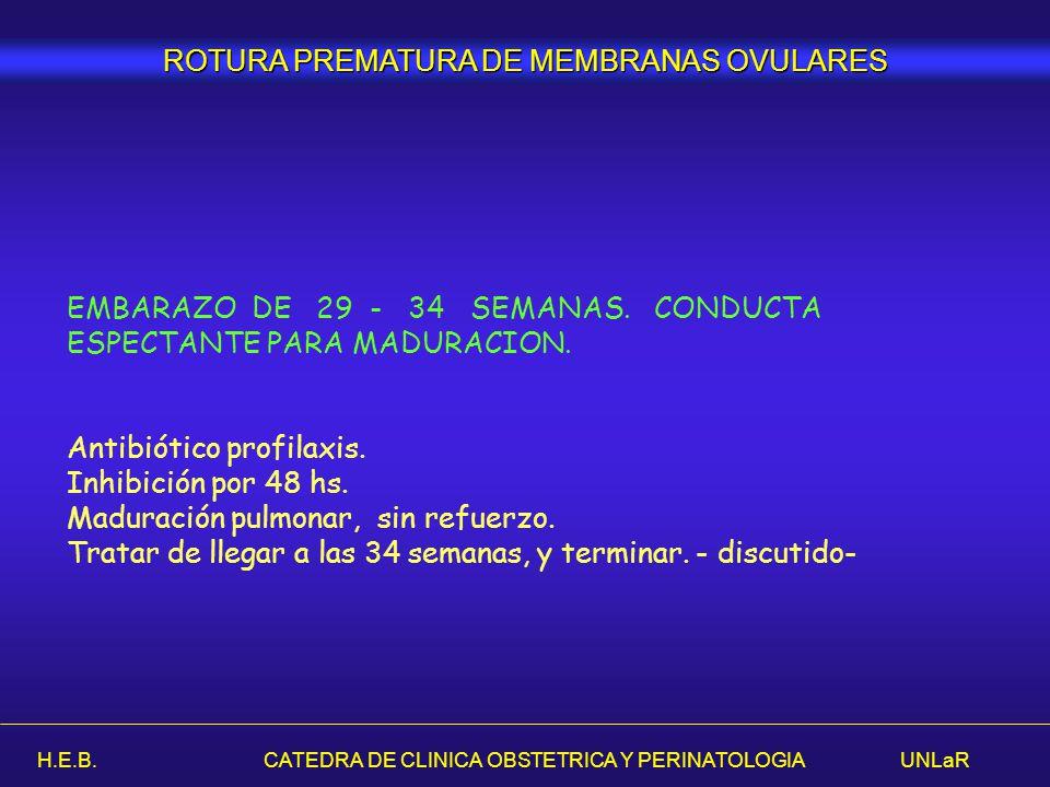 H.E.B. CATEDRA DE CLINICA OBSTETRICA Y PERINATOLOGIA UNLaR EMBARAZO DE 29 - 34 SEMANAS. CONDUCTA ESPECTANTE PARA MADURACION. Antibiótico profilaxis. I
