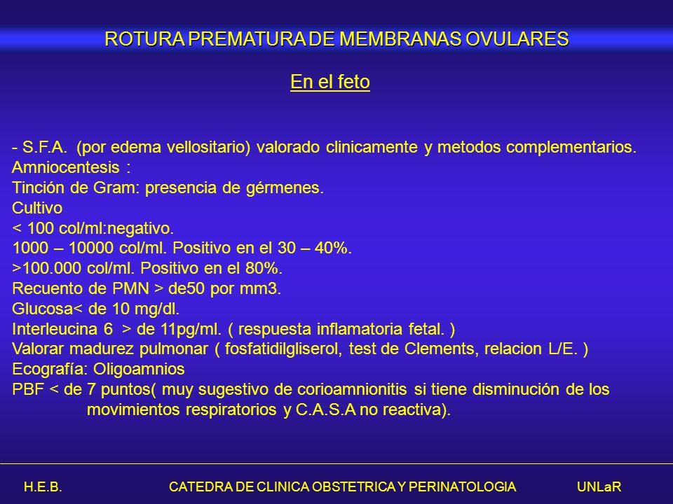 H.E.B. CATEDRA DE CLINICA OBSTETRICA Y PERINATOLOGIA UNLaR - S.F.A. (por edema vellositario) valorado clinicamente y metodos complementarios. Amniocen