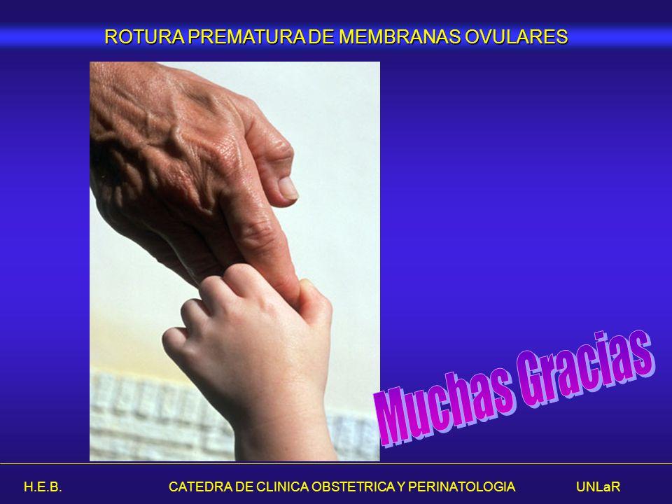 H.E.B. CATEDRA DE CLINICA OBSTETRICA Y PERINATOLOGIA UNLaR ROTURA PREMATURA DE MEMBRANAS OVULARES