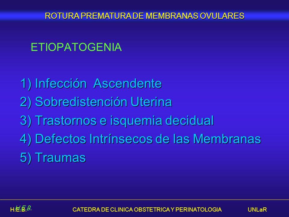 H.E.B. CATEDRA DE CLINICA OBSTETRICA Y PERINATOLOGIA UNLaR ETIOPATOGENIA 1) Infección Ascendente 2) Sobredistención Uterina 3) Trastornos e isquemia d