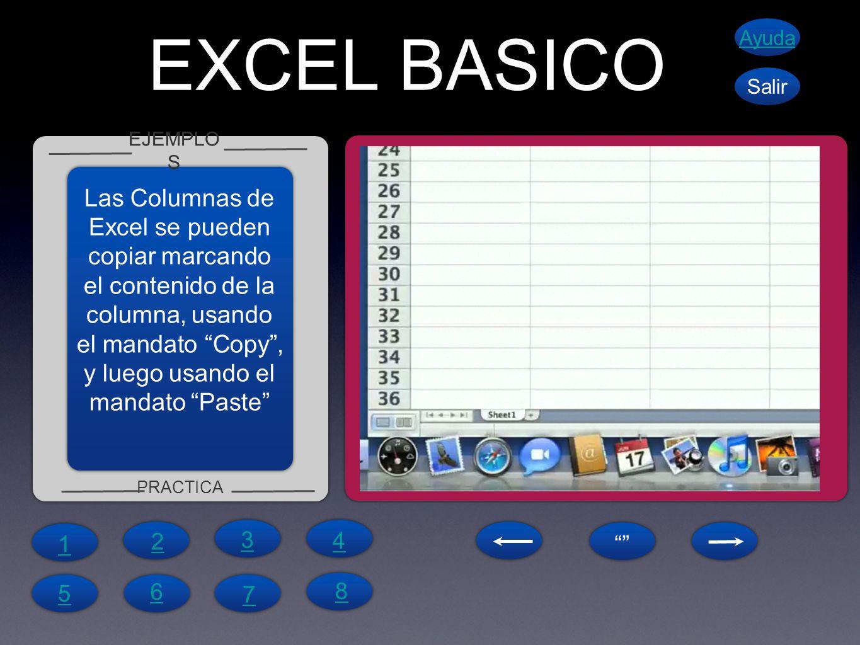 EXCEL BASICO EJEMPLO S PRACTICA Ayuda Salir Las Columnas de Excel se pueden copiar marcando el contenido de la columna, usando el mandato Copy, y luego usando el mandato Paste 1 4 6 5 7 8 2 3