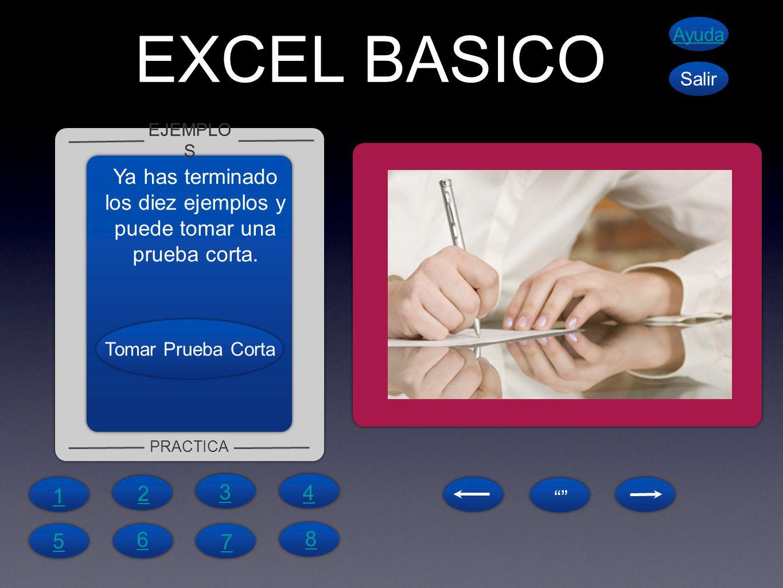 EXCEL BASICO EJEMPLO S PRACTICA Ayuda Salir Ya has terminado los diez ejemplos y puede tomar una prueba corta. 1 4 6 5 7 8 2 3 Tomar Prueba Corta