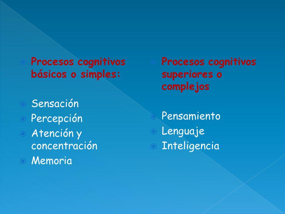 Procesos cognitivos básicos o simples: Sensación Percepción Atención y concentración Memoria Procesos cognitivos superiores o complejos Pensamiento Le