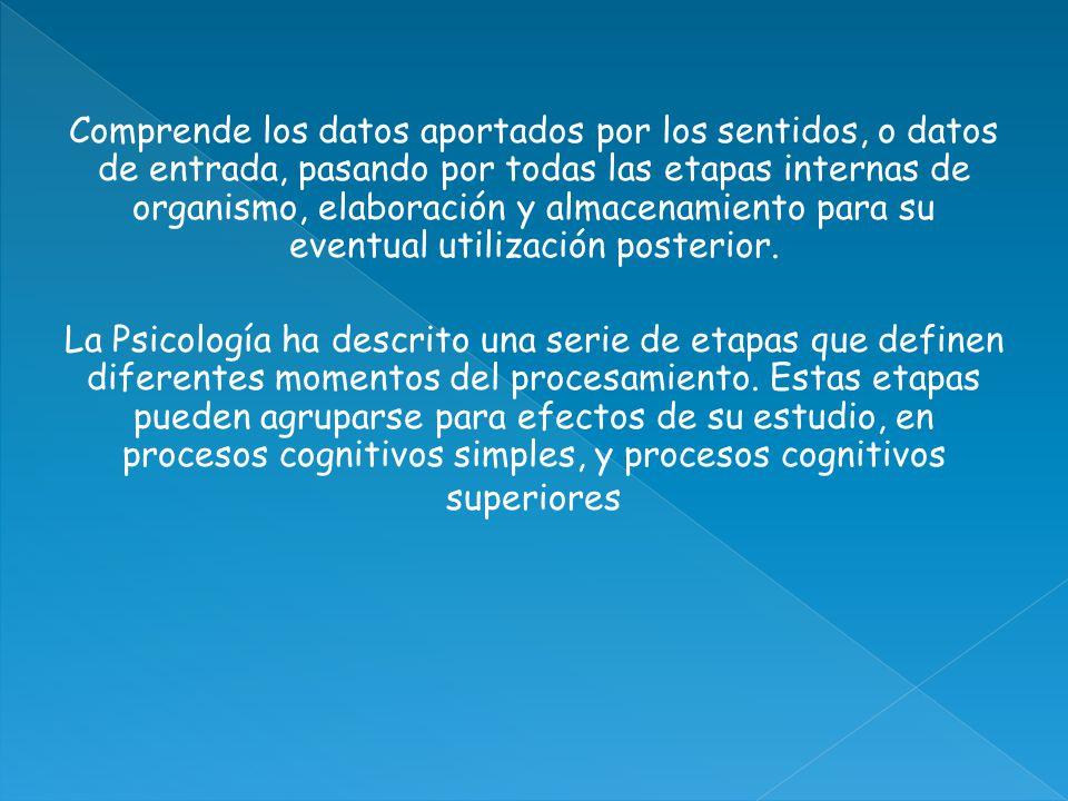 Procesos cognitivos básicos o simples: Sensación Percepción Atención y concentración Memoria Procesos cognitivos superiores o complejos Pensamiento Lenguaje Inteligencia
