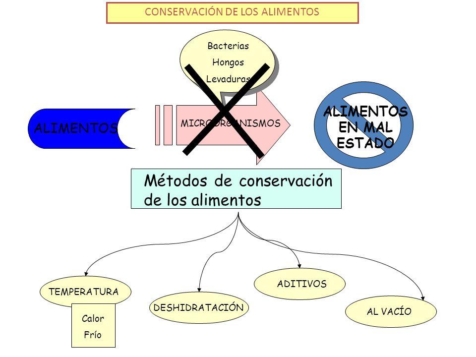 CONSERVACIÓN DE LOS ALIMENTOS Métodos de conservación de los alimentos ALIMENTOS ALIMENTOS EN MAL ESTADO MICROORGANISMOS Bacterias Hongos Levaduras DESHIDRATACIÓNADITIVOSAL VACÍOTEMPERATURA Calor Frío