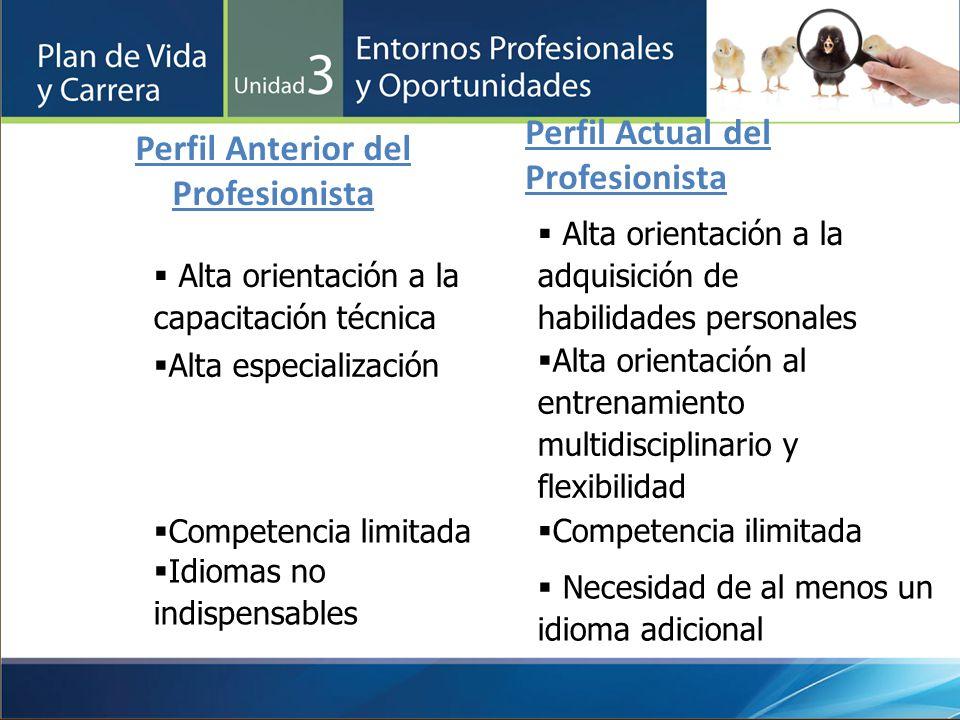 Perfil Anterior del Profesionista Perfil Actual del Profesionista Alta orientación a la capacitación técnica Alta orientación a la adquisición de habi