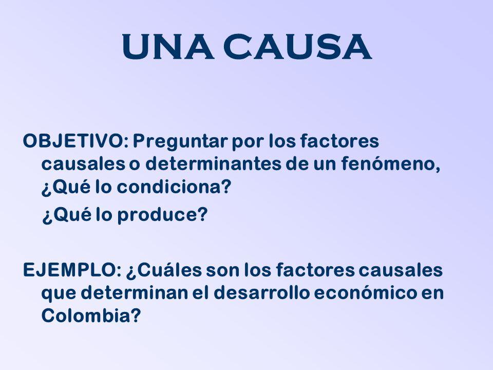 UNA CAUSA OBJETIVO: Preguntar por los factores causales o determinantes de un fenómeno, ¿Qué lo condiciona? ¿Qué lo produce? EJEMPLO: ¿Cuáles son los