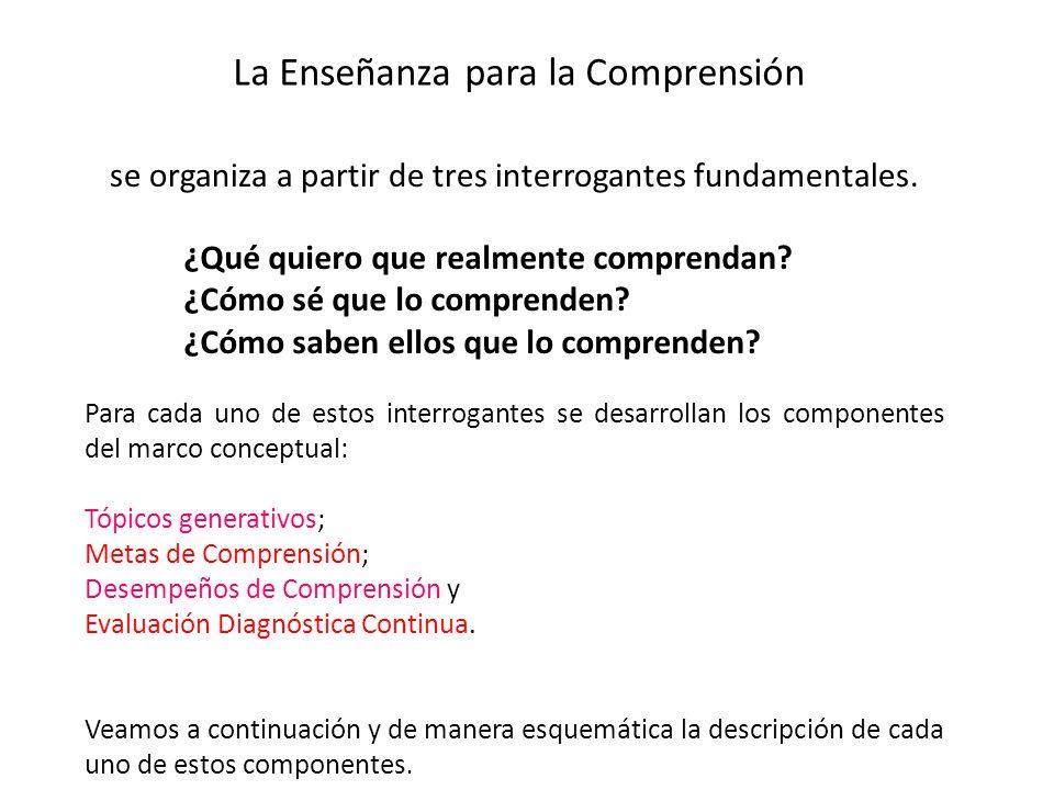 Para cada uno de estos interrogantes se desarrollan los componentes del marco conceptual: Tópicos generativos; Metas de Comprensión; Desempeños de Comprensión y Evaluación Diagnóstica Continua.
