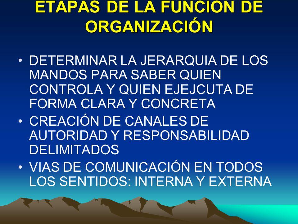 ETAPAS DE LA FUNCIÓN DE ORGANIZACIÓN DETERMINAR LA JERARQUIA DE LOS MANDOS PARA SABER QUIEN CONTROLA Y QUIEN EJEJCUTA DE FORMA CLARA Y CONCRETA CREACI