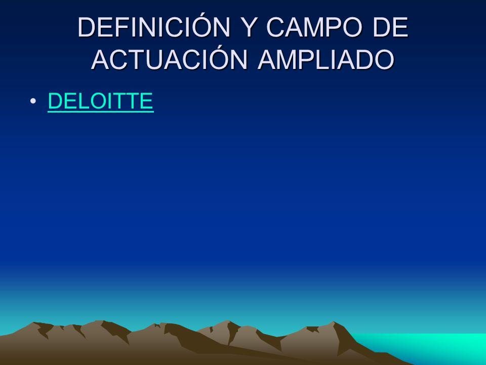 DEFINICIÓN Y CAMPO DE ACTUACIÓN AMPLIADO DELOITTE