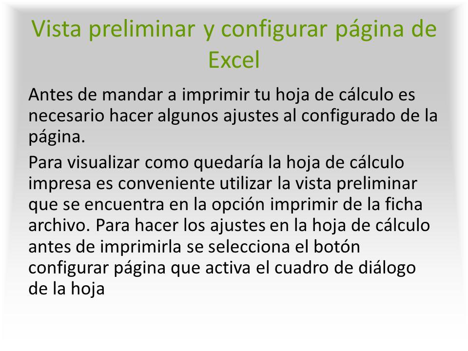 Vista preliminar y configurar página de Excel Antes de mandar a imprimir tu hoja de cálculo es necesario hacer algunos ajustes al configurado de la pá