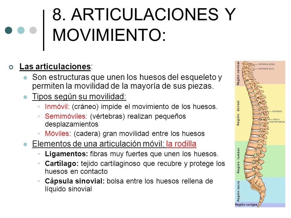 8. ARTICULACIONES Y MOVIMIENTO: Las articulaciones: Son estructuras que unen los huesos del esqueleto y permiten la movilidad de la mayoría de sus pie