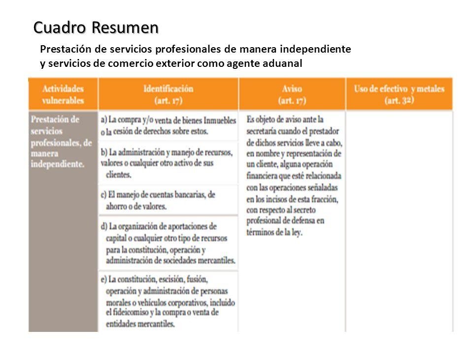 Prestación de servicios profesionales de manera independiente y servicios de comercio exterior como agente aduanal Cuadro Resumen