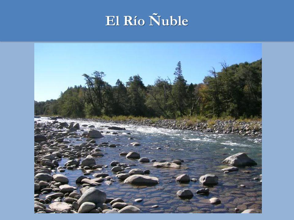 1.Hoya: 5.000 km2 2.Nacimiento al oriente Nevados de Chillán, recorre 155 km descargando en el Río Itata, en el sector Confluencia 3.Régimen nival 4.Caudal ( Q85% ) 109 m 3 /s aprox 5.Superficie actualmente regada: entre 15 - 20.000 has 6.Superficie bajo cota de canal: 60.000 ha 7.Potencial: 100.000 has con riego tecnificado