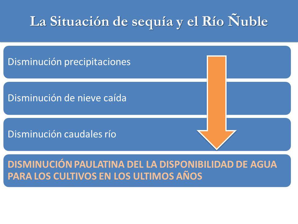 La Situación de sequía y el Río Ñuble Alta variabilidad de los caudales: interanual, en la temporada, diario Baja seguridad de riegoBaja superficie de riego respecto al potencial INCERTIDUMBRE PARA LA INVERSIÓN AGRICOLA